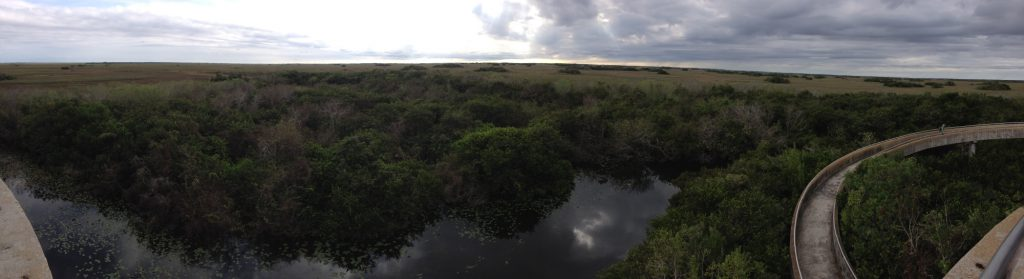 Everglades National Park - Florida, USA